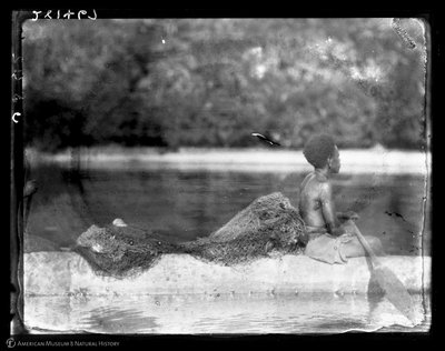 http://lbry-web-002.amnh.org/san/to_upload/Beck-PapuaNewGuinea/W-4x5-negs/281467.jpg