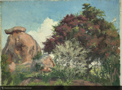 http://lbry-web-002.amnh.org/san/palais-de-tokyo-loan-paintings/100101665.jpg