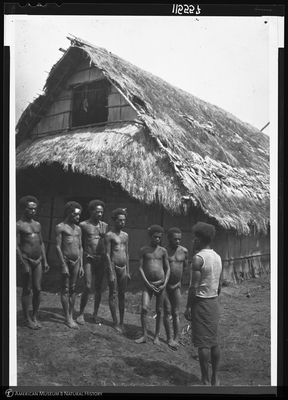 http://lbry-web-002.amnh.org/san/to_upload/Beck-PapuaNewGuinea/NG-5x7-negs/115557.jpg