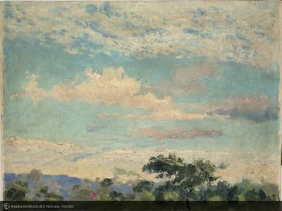http://lbry-web-002.amnh.org/san/palais-de-tokyo-loan-paintings/100101668.jpg
