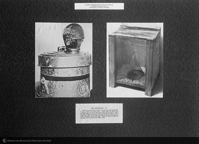 http://images.library.amnh.org/d/t/8x10/0001/00034180_l.jpg