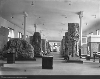 http://images.library.amnh.org/d/t/8x10/0001/00003937_l.jpg