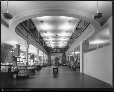 http://images.library.amnh.org/d/t/8x10/0002/00318464_l.jpg