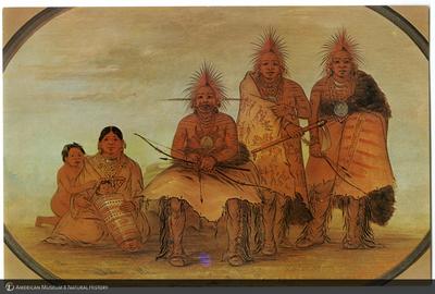 http://lbry-web-002.amnh.org/san/AMNH_postcards/100213323_47.jpg