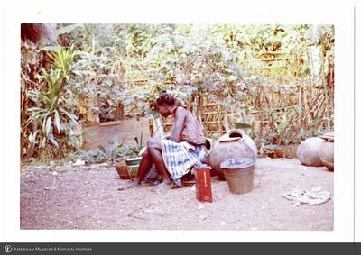 http://lbry-web-002.amnh.org/san/photoprintcollections/Arth/ppc-a78-100213278-22.jpg