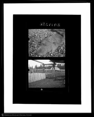 2A19386.jpg