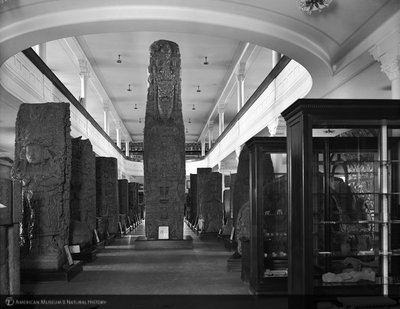 http://images.library.amnh.org/d/t/8x10/0001/00033070_l.jpg