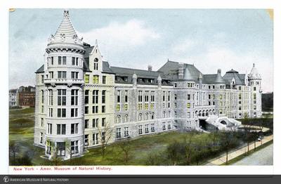 http://lbry-web-002.amnh.org/san/AMNH_postcards/100213323_17.jpg