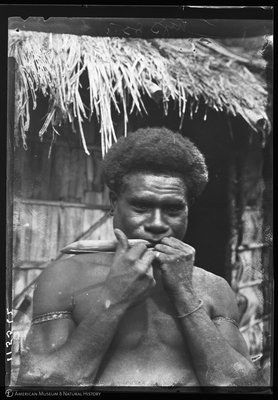 http://lbry-web-002.amnh.org/san/to_upload/Beck-PapuaNewGuinea/NG-5x7-negs/115562.jpg