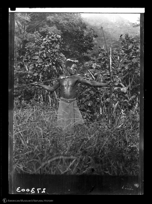 http://lbry-web-002.amnh.org/san/to_upload/Beck-PapuaNewGuinea/W-4x5-negs/273003.jpg