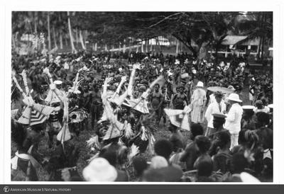 http://lbry-web-002.amnh.org/san/to_upload/Beck-PapuaNewGuinea/NG-5x7-prints/115692.jpg