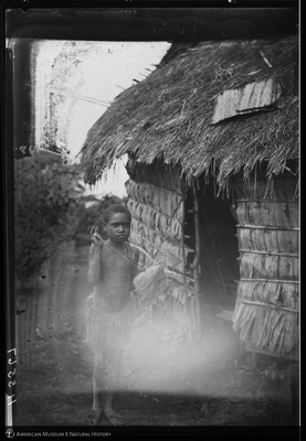 http://lbry-web-002.amnh.org/san/to_upload/Beck-PapuaNewGuinea/NG-5x7-negs/115567.jpg