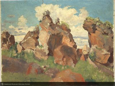 http://lbry-web-002.amnh.org/san/palais-de-tokyo-loan-paintings/100101664.jpg