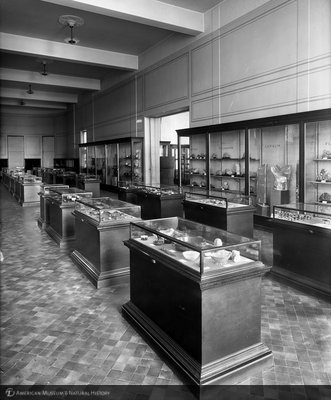 http://images.library.amnh.org/d/t/8x10/0001/00031478_l.jpg