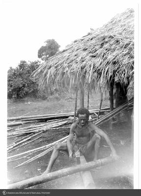 http://lbry-web-002.amnh.org/san/to_upload/Beck-PapuaNewGuinea/NG-5x7-prints/115542.jpg
