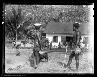 http://lbry-web-002.amnh.org/san/to_upload/Beck-PapuaNewGuinea/W-4x5-negs/281465.jpg