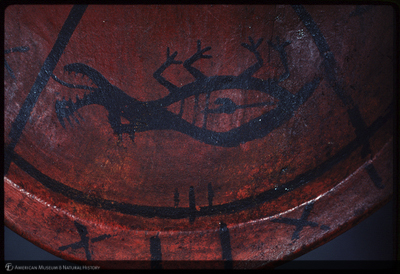 http://lbry-web-002.amnh.org/san/35mm/K13978.jpg