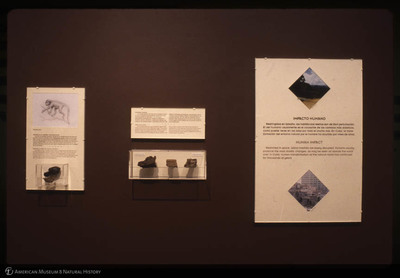 http://lbry-web-002.amnh.org/san/35mm/psc-103e-171.jpg
