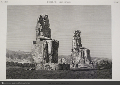 http://lbry-web-002.amnh.org/san/naturalhistories/b11818153_3.jpg