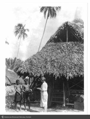 http://lbry-web-002.amnh.org/san/to_upload/Beck-PapuaNewGuinea/NG-5x7-prints/115622.jpg