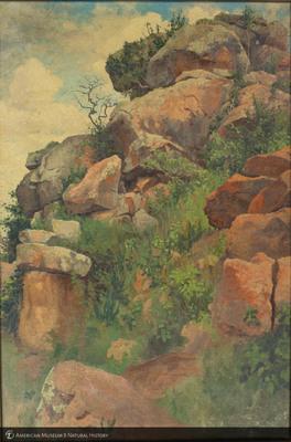 http://lbry-web-002.amnh.org/san/palais-de-tokyo-loan-paintings/100119028.jpg