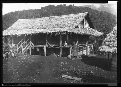 http://lbry-web-002.amnh.org/san/to_upload/Beck-PapuaNewGuinea/NG-5x7-negs/115788.jpg