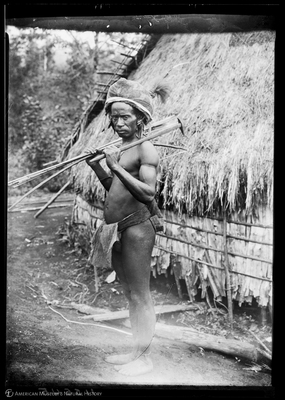 http://lbry-web-002.amnh.org/san/to_upload/Beck-PapuaNewGuinea/NG-5x7-negs/115545.jpg
