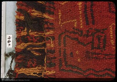 http://lbry-web-002.amnh.org/san/35mm/K4783.jpg
