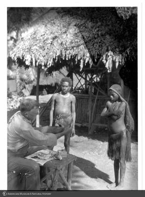 http://lbry-web-002.amnh.org/san/to_upload/Beck-PapuaNewGuinea/NG-5x7-prints/115762.jpg