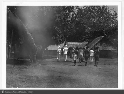 http://lbry-web-002.amnh.org/san/to_upload/Beck-PapuaNewGuinea/NG-5x7-prints/115674.jpg