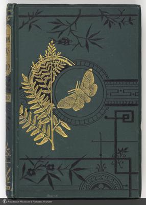 http://lbry-web-002.amnh.org/san/naturalhistories/b11970637.jpg
