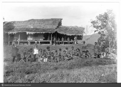 http://lbry-web-002.amnh.org/san/to_upload/Beck-PapuaNewGuinea/NG-5x7-prints/115612.jpg