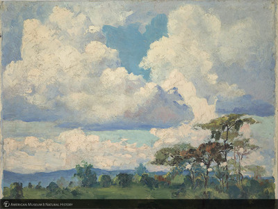 http://lbry-web-002.amnh.org/san/palais-de-tokyo-loan-paintings/100101662.jpg