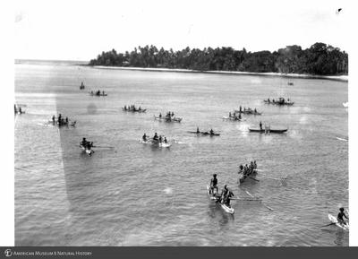 http://lbry-web-002.amnh.org/san/to_upload/Beck-PapuaNewGuinea/NG-5x7-prints/115772.jpg