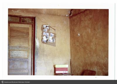 http://lbry-web-002.amnh.org/san/photoprintcollections/Arth/ppc-a78-100213280-13.jpg