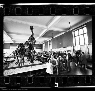 http://lbry-web-002.amnh.org/san/to_upload/35mm_halls_new/602864_03.jpg