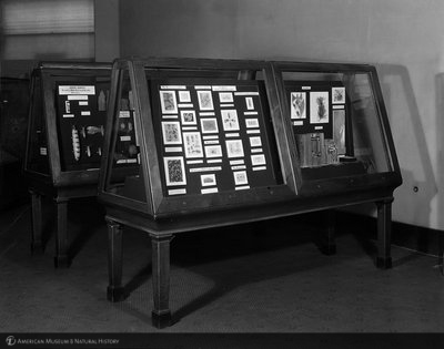 http://images.library.amnh.org/d/t/8x10/0001/00311965_l.jpg