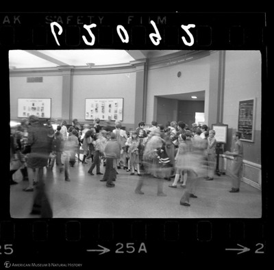 http://lbry-web-002.amnh.org/san/to_upload/35mm_halls_new/62092_25a.jpg
