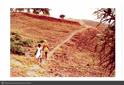 http://lbry-web-002.amnh.org/san/photoprintcollections/Arth/ppc-a78-100213279-13.jpg
