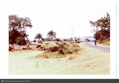 http://lbry-web-002.amnh.org/san/photoprintcollections/Arth/ppc-a78-100213268-11.jpg