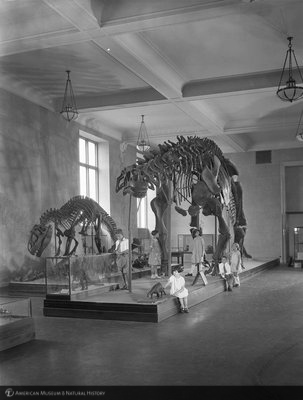 http://images.library.amnh.org/d/t/8x10/0001/00312166_l.jpg