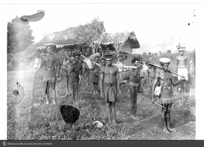 http://lbry-web-002.amnh.org/san/to_upload/Beck-PapuaNewGuinea/NG-5x7-prints/115613.jpg