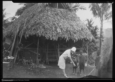 http://lbry-web-002.amnh.org/san/to_upload/Beck-PapuaNewGuinea/NG-5x7-negs/115637.jpg
