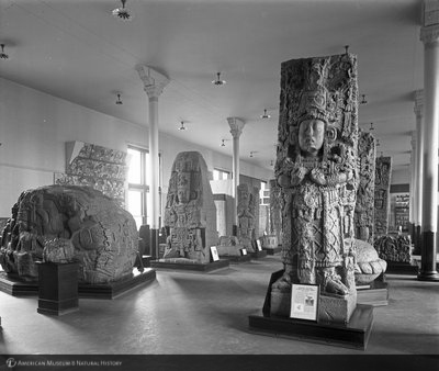 http://images.library.amnh.org/d/t/8x10/0001/00033036_l.jpg