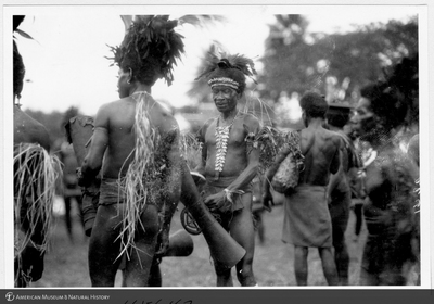 http://lbry-web-002.amnh.org/san/to_upload/Beck-PapuaNewGuinea/NG-5x7-prints/115647.jpg