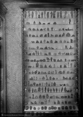 http://images.library.amnh.org/d/t/8x10/0002/00314235_l.jpg