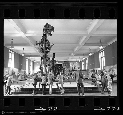http://lbry-web-002.amnh.org/san/to_upload/35mm_halls_new/602016_22.jpg