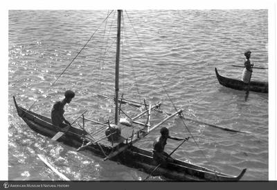 http://lbry-web-002.amnh.org/san/to_upload/Beck-PapuaNewGuinea/NG-5x7-prints/115767.jpg