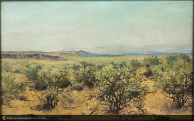 http://lbry-web-002.amnh.org/san/palais-de-tokyo-loan-paintings/100119044.jpg