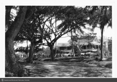 http://lbry-web-002.amnh.org/san/to_upload/Beck-PapuaNewGuinea/NG-5x7-prints/115678.jpg